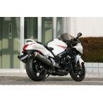 ストライカー バイク マフラー ストリートコンセプト スリップオン 2本出し JMCA認定 GSX1300R 隼 型式GX72A車検対応 96900OTJ