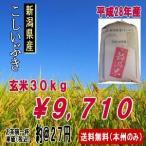 新潟産こしいぶき 玄米30kg(平成28年産)送料無料(本州のみ)