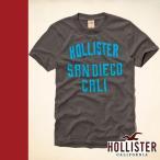 正規品 Hollister Co. ホリスター Tシャツ 半袖 グレー SURFERS POINT T-SHIRT