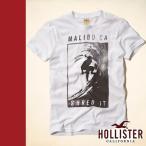 正規品 Hollister Co. ホリスター Tシャツ 半袖 ホワイト BONEYARD BEACH T-SHIRT