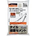 サンホーム タイル接着セメント 速硬性 1.3kg (宅配便配送のみ)
