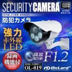 防犯カメラ SDカード録画 屋外 赤外線内蔵 家庭用 バレット型 防犯カメラ OL-019