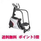 DAIKOU(ダイコウ)業務用クライムステッパー DK-5310(送料無料/ポイント5倍)