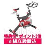 エアロバイク SPIRIT (スピリット)スピンバイク SB702-3620 Dyaco (ダイヤコ)組立設置 / マット付