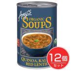 ケール、キヌア、レンティルスープ 408g (Kale、Quinoa、Lentil Soup) ×12個セット  - アリサン