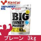 ケンタイ プロテイン BIG100% ホエイプロテイン プレーンタイプ 3kg  - 健康体力研究所 (kentai)