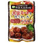 デミグラスソース風野菜大豆ボール 100g  - 三育フーズ