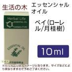 生活の木 ベイ(ローレル/月桂樹) 10ml  - 生活の木
