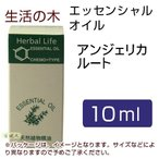生活の木 アンジェリカルート 10ml  - 生活の木