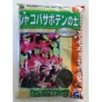2-24 あかぎ園芸 シャコバサボテンの土 5L 10袋