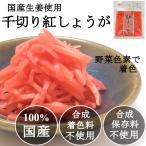 国産生姜使用 千切り 紅しょうが 無添加 牛丼、ラーメンに 使いやすい 小分けサイズ 45gx8袋セット