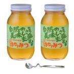鈴木養蜂場 はちみつ 大瓶2本セット(菜の花1.2kg、レンゲ1.2kg、はちみつスプーン) クローバー ギフト オーガニック 瓶入り マヌカハニー