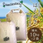 山形県産「はえぬき」新米 精米20kg(10kg×2袋) 29年産 新米
