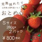 チビいちご。おやつにどうぞ。イチゴ2パック(約260gx2)Sサイズ 完熟採れたてイチゴです。山形県産「おとめ心」是非お試しください