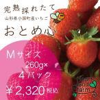 イチゴ好きのイチゴです!イチゴ4パック(約260gx4)Mサイズ 完熟採れたてイチゴです。山形県産「おとめ心」是非お試しください