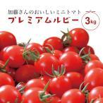 加藤さんのミニトマト プレミアムルビー 3kg 山形県長井産 こだわり栽培 フルーツトマト