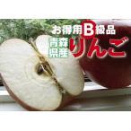 【B級品・ジョナゴールド・10kg(10キロ)】わけあり・青森県産
