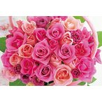Yahoo!ハローYahoo!店300ピース ジグソーパズル フレグランスジグソーパズル ブルーミングピンクローズ -BLOOMING PINK ROSE-(26x38cm