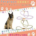 犬用リード ダービー DERBY ハーフチョーク リード GC12/170 散歩用品 お出かけ お散歩グッズ 8010690144818 適応体重60kgまで
