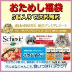 猫用流動食 「シシア キャットフード(パウチ) 5種類セット」 送料無料 無添加・無着色で安心のシシアシリーズ 福袋 お試しセット