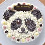 キャラクターアイスケーキ・ラッキーパンダくん 5号