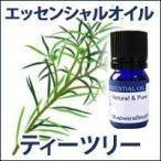 免疫力 アロマ オイル 精油  / ティーツリー 5ml / エッセンシャルオイル アロマテラピー ティートゥリー インフルエンザ