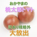 ショッピングトマト 出荷終了間近 送料無料 桃太郎トマト 訳あり規格外品 岡山びほくエリア産 1kg