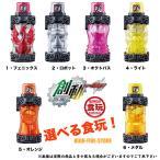 仮面ライダービルド SGフルボトル05 選べるフルボトル 1個入 食玩・清涼菓子 (仮面ライダービルド)