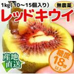 奇異果 - なかだい農園のレッドキウイ 1kg(10〜15個入り) 広島産 大崎下島
