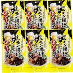 広島名産 ホルモン揚げ せんじ肉 にんにく風味 6袋セット (1袋40g×6) 大黒屋食品