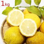 送料込み 農園直送 広島県産 レモン 約1kg サイズいろいろ 皮まで食べられます 国産レモン 広島県呉市豊島 竹川農園