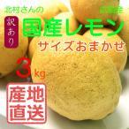 【広島 大長産 産地直送 北村農園 国産 レモン】北村さんのレモン3kg【サイズ混合】
