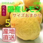 【産地直送 北村農園 国産レモン】北村さんの大長産レモン5kg【サイズ混合】
