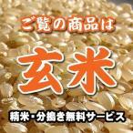 福島 会津産 コシヒカリ 玄米 1kg