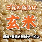 魚沼産 コシヒカリ 玄米 1kg