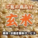 山形産 つや姫 玄米 1kg