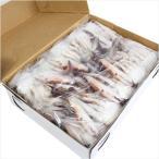 切り渡り蟹 ワタリガニ カニ かに Mサイズ(21尾〜25尾) 1kg