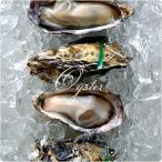 国産 牡蠣 カキ ウルトラハイプレッシャー低温処理 兵庫県室津産 殻付き牡蠣 12個入り