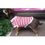小型犬服 チワワ服 ダックス服 トイプードル服  定番赤ボーダー