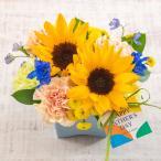 日比谷花壇 父の日 ヒマワリ アレンジメント ソレイユ  花 プレゼント ギフト 父の日カード付き