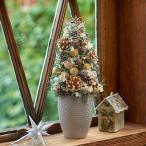 クリスマス ドライ ツリー「ツリー ド プラチナ」プリザーブドフラワー 日比谷花壇