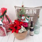 クリスマス コンテナプランツ「クリスマスガーデン」 日比谷花壇