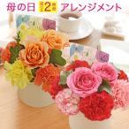 母の日 花 選べるフラワー アレンジメント カーネーション プレゼント 日比谷花壇