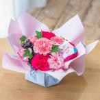 母の日 花 プレゼント カーネーション アレンジメント「シェールママン ピンク」  ギフト 母の日カード付き 日比谷花壇