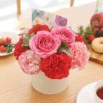 母の日 カーネーション アレンジメント「ロゼボヌール」 日比谷花壇 花 プレゼント ギフト 母の日カード付き
