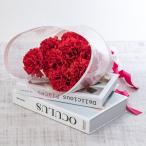 母の日 ギフト 花束 赤いカーネーションボックス 「ありがとうの花」 日比谷花壇