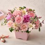 旬の花 カーネーション アレンジメント「レスレーヴ」 日比谷花壇