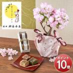 風呂敷包み桜の小鉢 旭山 4号と羊羹3種のセット 日比谷花壇
