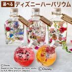 選べるディズニー Healing Bottle Disney collection 記念日