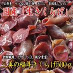 国産生きくらげ500g(冷蔵)(送料無料)